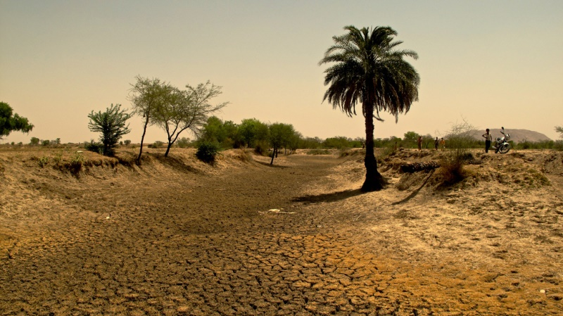 Dried riverbed in Rajasthan, India. The United States could offer drought relief and agricultural assistance to India to help alleviate unusually dry conditions in the country this year.  Source: Austin Yoder's flickr photostream, used under a creative commons license.